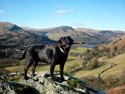 Morgan enjoys the views above Ullswater and Patterdale